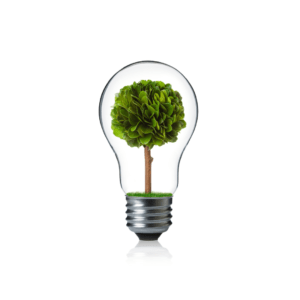 sostenibilidad en el hogar shambala