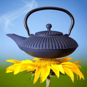 sostenibilidad llevada a casa aceites esenciales shambala