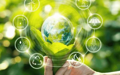 La sostenibilidad llevada a tu casa: Aceites Esenciales y el uso de la energía como arma contra los tóxicos del hogar